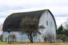 Vieille grange grise Images libres de droits