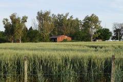 Vieille grange rouge 1 Image libre de droits