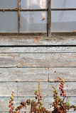 Vieille grange superficielle par les agents Photographie stock libre de droits