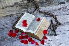 Vieille histoire d'amour captivante de 1763 Images libres de droits