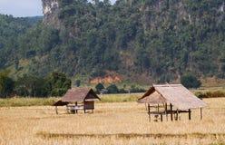 Vieille hutte à un champ Images stock
