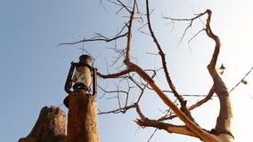 Vieille lampe de lanterne à l'arbre banque de vidéos