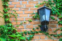 Vieille lampe sur le mur Photographie stock libre de droits
