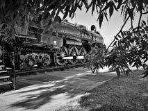 Vieille locomotive par les arbres Image libre de droits