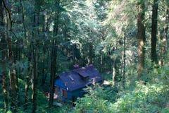 Vieille maison abandonnée dans la forêt Alishan Photo stock
