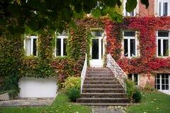 Vieille maison avec des feuilles d'automne sur le mur Image libre de droits