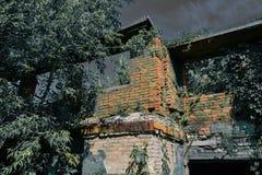 Vieille maison brûlée envahie avec des usines pendant la nuit éclairée par la lune horreur Yeux dans l'obscurité images stock