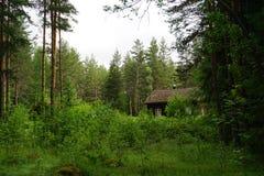 Vieille maison dans la forêt Photo stock