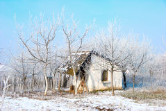 Vieille maison dans le countyside hivernal Photo stock