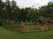 Vieille maison de campagne avec un petit jardin de tournesol à Sibiu Photo libre de droits