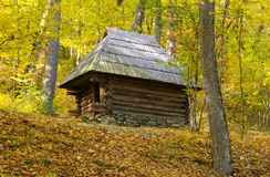 Vieille maison en bois au milieu de la forêt d'or Photo libre de droits