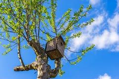 Vieille maison en bois d'oiseau Photographie stock libre de droits