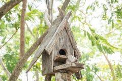 Vieille maison en bois d'oiseau Images libres de droits