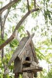 Vieille maison en bois d'oiseau Photos stock