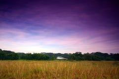 Vieille maison sur la prairie Photo libre de droits