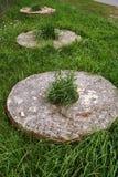 Vieille meule sur l'herbe verte Photographie stock