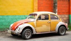 Vieille moutarde et insecte rouge devant le mur coloré Photos libres de droits