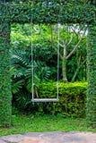 Vieille oscillation en bois de jardin de vintage accrochant le fond d'herbe verte Image stock