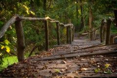 Vieille passerelle dans la forêt Photographie stock libre de droits