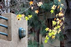 Vieille petite lanterne et feuillage jaune Photos libres de droits