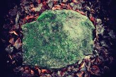 Vieille pierre lourde végétée avec de la mousse Images stock