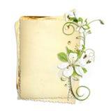 Vieille pile de papier avec les fleurs blanches de cerise Images stock