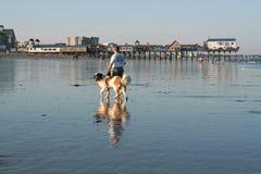 Vieille plage de verger, Maine Image libre de droits