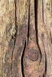Vieille planche avec la texture Photos stock