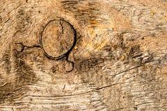Vieille planche avec la texture Image libre de droits