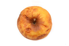 Vieille pomme à nervures sèche, pomme jaune, pomme décomposée, texture naturelle Images stock