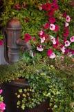 Vieille pompe à eau avec des fleurs photos stock