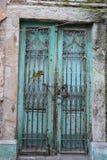 Vieille porte de fer photo libre de droits