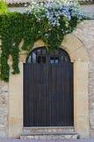 Vieille porte en bois avec des branches Image libre de droits