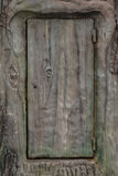 Vieille porte en bois dans l'arbre photos stock