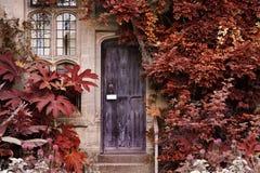 Vieille porte en bois de la maison en pierre avec de la La colorée surréaliste alternative Images libres de droits
