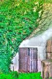 Vieille porte entre le lierre dans le hdr Image libre de droits