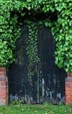 Vieille porte noire couverte de végétation Image libre de droits