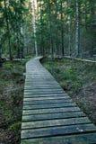 Vieille promenade en bois couverte de feuilles dans la forêt antique photo stock