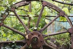Vieille roue en bois Image libre de droits