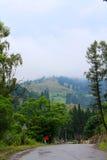 Vieille route à la montagne Images libres de droits