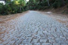 Vieille route de pavé rond dans la forêt Photographie stock