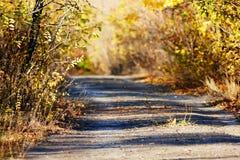 Vieille route envahie Image libre de droits