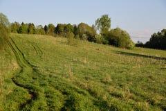Vieille route par le champ et la forêt Image libre de droits