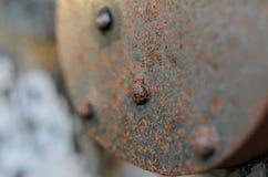Vieille serrure rouillée sur les portes en bois Image stock