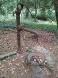Vieille source dans un jardin Photo libre de droits