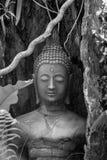Vieille statue de Bouddha Images libres de droits