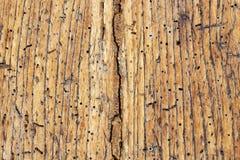Vieille surface en bois endommagée photo stock