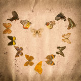 Vieille texture de papier grunge de guindineau Image stock