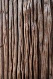 Vieille texture en bois photo stock