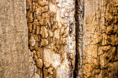 Vieille texture en bois - barrière en bois âgée Photos libres de droits